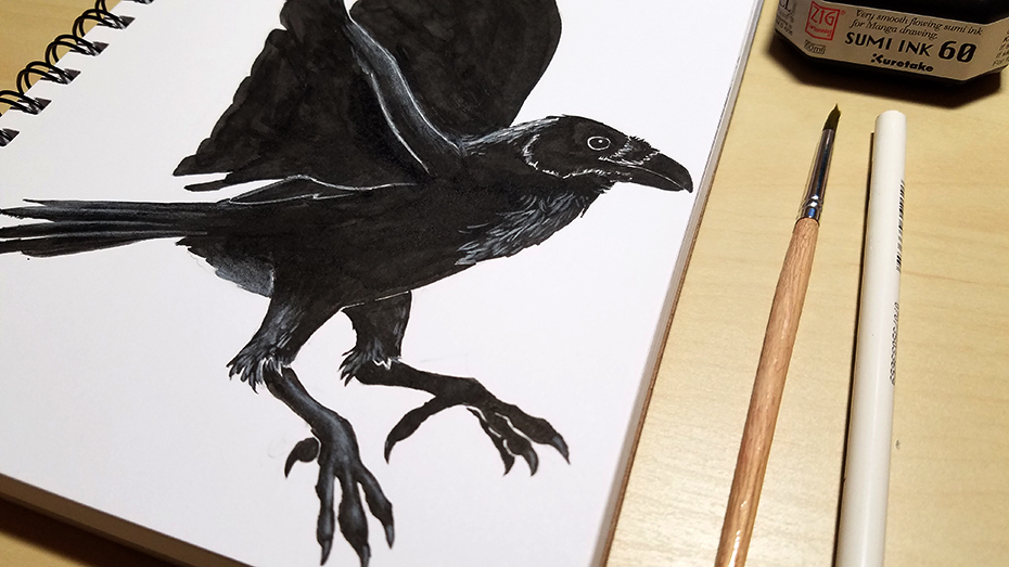 Ink drawing of a raven for Inktober